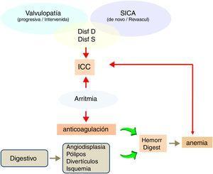 Esquema del perfil sintomático de comorbilidad más frecuente que lleva al enfermo a Urgencias y a iniciar TRS de forma precipitada. D: diastólica; Disf: disfunción; ICC: insuficiencia cardíaca congestiva; S: sistólica; SICA: síndrome isquémico coronario agudo.