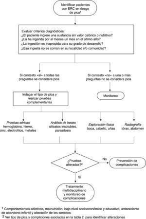 Algoritmo para el diagnóstico de pica. Adaptada de: American Psychiatric Association11, Woywodt y Kiss12, Waller y Pendergrass13.