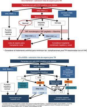 Aproximación de la valoración del tratamiento frente al VHC en pacientes con insuficiencia renal crónica terminal candidatos a trasplante renal.