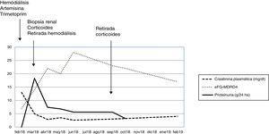 Evolución de la función renal y proteinuria en un año de seguimiento.
