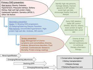 Overview of the preventive measures in chronic kidney disease (CKD) to highlight the similarities and distinctions pertaining to primary, secondary, and tertiary preventive measures and their intended goals.