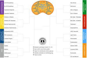 "NephMadness 2019 brackets. NephMadness is an online initiative that leverages the tools of social media to teach about the latest and greatest breakthroughs in the field of nephrology based on the premise of the ""March Madness"" basketball tournament. 32 nephrology concepts are divided into eight main topics (regions) with four subtopics (teams), where the participant decides which topic is more relevant in each direct matchup.70"