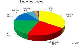 Distribución de los síndromes renales en el momento de la biopsia renal.