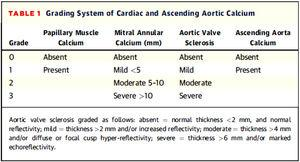 Sistema de gradación de la calcificación valvular y aorta ascendente de Gaibazzi et al. (31).