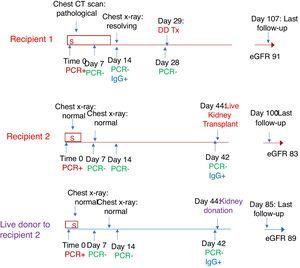 Conceptual timeline depicting course from initial diagnosis of COVID-19 to kidney transplantation and most recent follow-up of both recipients (labelled in red) and live donor to second recipient (labelled in purple). (abbreviations: S- in the box refers to days with symptoms, DDTx: deceased donor transplant (recipient 1), eGFR: estimated glomerular filtration rate in ml/min/m2).