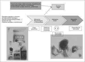 Desarrollo de la pérdida de función hasta la situación de dependencia, y situación del anciano frágil.