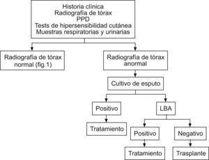 Tratamiento diagnóstico de tuberculosis en trasplante no urgente y radiografía de tórax anormal13. LBA: lavado broncoalveolar; PPD: purified protein derivative `derivado proteico purificado'.