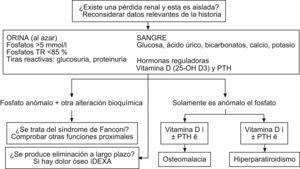 Enfoque práctico para la evaluación de la hipofostatemia. PTH: parathormona.