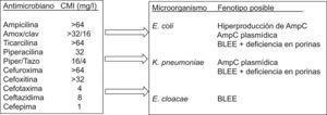 Ejercicio fenotípico que recoge las inferencias que pueden realizarse ante un fenotipo determinado sin conocer previamente la identificación del microorganismo. BLEE: betalactamasa de espectro extendido.