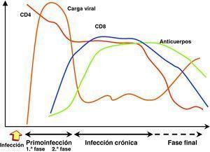 Evolución de carga viral, CD4 y respuesta inmunitaria en la infección por el virus de la inmunodeficiencia humana-1.