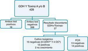Resultados utilizando el algoritmo B de la ASM. aClostridium difficile no toxigénico. b Otro crecimiento bacteriano.