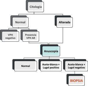 Algoritmo para la elección de la anoscopia y biopsia.