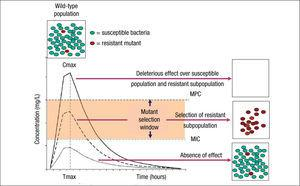 Mutant selection window (MSW) and mutant prevention concentration (MPC). Square boxes represent the bacterial population and curves the pharmacokinetics (concentration over time) of an antimicrobial agent. MSW is the concentration range in which resistant mutants can be selected and is delimited by the minimal inhibitory concentration (MIC) and the MPC. Above MPC, the selection of resistant mutant subpopulation should not be possible and the susceptible population is abolished, whereas below MIC values no effect over susceptible and resistant subpopulations is theoretically produced.
