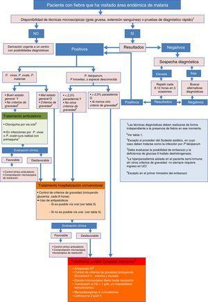 Algoritmo de diagnóstico y tratamiento de la malaria importada en España.