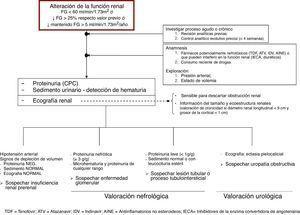 Algoritmo para la evaluación de la alteración de la función renal en el paciente con infección por el VIH. AINE: antiinflamatorios no esteroideos; ATV: atazanavir; CPCo: cociente proteína/creatinina en orina; FG: filtrado glomerular; IDV: indinavir; IECA: inhibidores de la enzima convertidora de angotensina; TDF: tenofovir.
