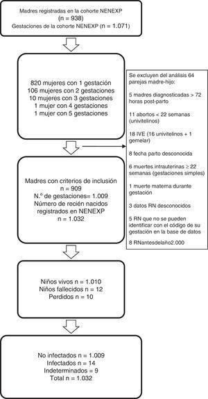 Diagrama de flujo del estudio de la cohorte NENEXP.