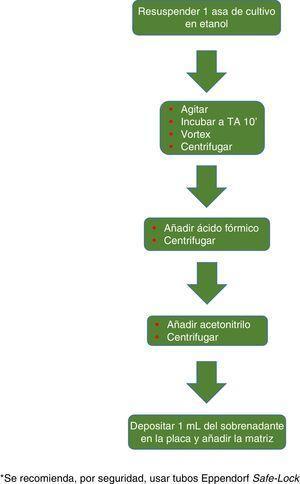 Procesamiento de micobacterias recomendado para el sistema VITEK MS.