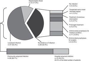 Severity of infection and infection source. Distribution of the diverse causes of infection along with the severity of the infection. In the absence of infection, other factors that condition antimicrobial use (antimicrobial prophylaxis, suspected infection and previous colonisation) are detailed (n=number of patients, prevalence in %).