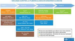Vacunas contra la tuberculosis en ensayos clínicos. En marrón, las vacunas subunidades que utilizan virus como vectores. En azul, las vacunas subunidades que utilizan adyuvantes para su administración. En verde, vacunas terapéuticas compuestas de extractos de vacunas inactivada. En naranja, las vacunas vivas atenuadas. Fuente WHO Global Tuberculosis Report 2017.