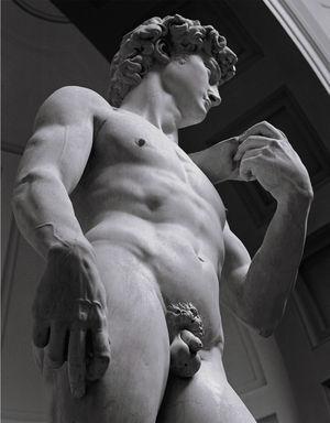 David de Miguel Ángel, Galería de la Academia de Florencia. Fuente: Magherini G19. Fotografía de Luciana Majoni, con permiso.