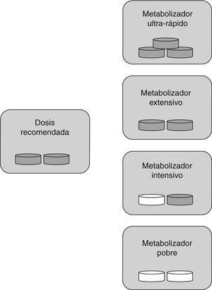 Dosis específica de fármaco según tipo de metabolizador para AAS: los metabolizadores ultrarrápidos necesitan más dosis de la habitual (son los sujetos resistentes), los metabolizadores extensivos necesitan la dosis estándar, para los metabolizadores intensivos y pobres es recomendable disminuir la cantidad de fármaco o cambiarlo. Píldora gris: fármaco administrado; píldora blanca: fármaco no administrado.