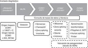Diagrama de flujo para la detección de mutaciones en los genes CCM en un contexto diagnóstico. Los recuadros con línea continua indican que dichas mutaciones son patogénicas. Los recuadros con líneas discontinuas indican que ese tipo de mutaciones deberían ser estudiadas a nivel de ADNc para valorar la patogenicidad.