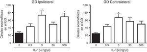 Curva concentración-respuesta del efecto de la IL-1β en la muerte neuronal en el giro dentado (GD) del hipocampo inducida por el estado epiléptico en la región ipsilateral (panel izquierdo) y contralateral (panel derecho) al sitio de inyección. Las barras representan la media±EEM del número de células eosinofílicas para el grupo vehículo y las diferentes concentraciones de la IL-1β inyectadas (n=6 por grupo experimental). *p<0,05 vs el grupo vehículo.