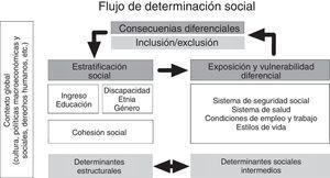 Propuesta de actualización de modelo de determinantes sociales de la salud. Elaboración propia, a partir del esquema de la Comisión de Determinantes Sociales de la Salud, OMS (2005).