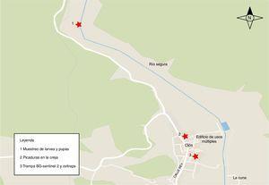 Localización de los puntos de muestreo y del punto donde uno de los técnicos recibió picaduras en la oreja, en el municipio de Ojós, a orillas del río Segura. (Mapa elaborado con la aplicación informática VecMap®.)