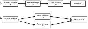 """Pleiotropía vertical y pleiotropía funcional. A: En la pleiotropía vertical, la variante genética """"A"""" se asocia con un factor de riesgo (1), la variante genética """"A"""" junto con el factor de riesgo (1) se asocian a otro factor de riesgo (2), y en conjunto llevan al desenlace """"Y"""". B: En la pleiotropía funcional, la variante genética """"A"""" se asocia con dos factores de riesgo (1 y 2) simultáneamente, y en conjunto la variante genética """"A"""", el factor de riesgo (1) y el factor de riesgo (2) llevan al desenlace """"Y""""."""