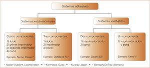 Clasificación de los diversos sistemas adhesivos a partir del tipo y el número de sus componentes.