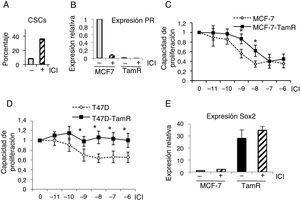 Células resistentes a tamoxifeno son resistentes a fulvestrant. A. Porcentaje de CSC (con fenotipo ALDH+) en células T47D, con fenotipo ALDH-positivas, en presencia o ausencia de fulvestrant (ICI). B. Análisis de expresión de PR (ARN) en células MCF-7 y resistentes a tamoxifeno (TamR) en presencia o ausencia de fulvestrant. C y D. Ensayo de proliferación de células MCF-7 y MCF-7-TamR (C) y células T47D y T47D-TamR (D) tratadas con concentraciones crecientes de fulvestrant (p<0,05). E. Niveles de expresión de Sox2 en células MCF-7 y resistentes a tamoxifeno en presencia o ausencia de fulvestrant.