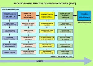 Mapa de procesos del procedimiento de BSGC.