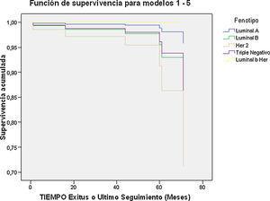 Subtipo intrínsecos y función de supervivencia.