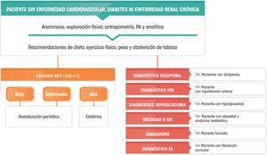 Recomendaciones de manejo clínico del riesgo cardiovascular en pacientes sin enfermedad cardiovascular, diabetes mellitus ni insuficiencia renal crónica. PA: presión arterial.