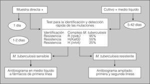 Estudio de laboratorio de resistencias de microbacterias. h: isoniacida; R: rifampicina.