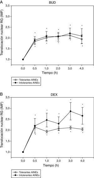 Efecto de la incubación con BUD (A) y DEX (B) en la translocación del RG en fibroblastos de sujetos tolerantes e intolerantes a los AINE. No se observan diferencias estadísticamente significativas en la translocación del RG inducida por BUD o DEX entre tolerantes e intolerantes a los AINE (*p<0,05 todos los grupos comparado con 0h, Wilcoxon).
