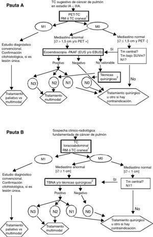 Pautas de estadificación del cáncer de pulmón. A) RM craneal para pacientes candidatos a tratamiento radical en estadio III. B)Técnicas quirúrgicas: se incluyen mediastinoscopia, mediastinotomía, mediastinoscopia cervical extendida, toracoscopia, linfadenectomía mediastínica transcervical extendida (TEMLA) y linfadenectomía mediastínica videoasistida (VAMLA). Notas: a) Se considerará negativo el resultado de la EBUS solo si, después de al menos tres punciones con presencia de linfocitos, no se observan células malignas. b) La pauta B puede ser aceptable en los centros sin accesibilidad a PET, EBUS ni EUS. c) El límite de 1,5cm para el tamaño de los ganglios mediastínicos en la pauta A se fundamenta en un metaanálisis (ver texto y referencia 14), El límite de 1cm (pauta B) es el empleado tradicionalmente.