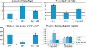 Histograma de la evaluación histopatológica, recuento alveolar radial, cocientes de área subepitelial/epitelial y recuentos de proteína de membrana de cuerpos laminares (células positivas para cuerpos laminares/mm2) en cada grupo. El asterisco (*) indica cambios significativos (p<0,05) en comparación con los grupos de O2 al 21% y de O2 al 95%+NSO.