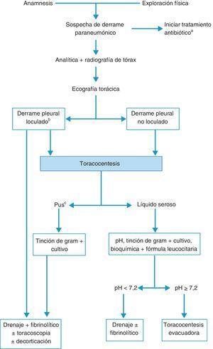 Algoritmo para el tratamiento del derrame paraneumónico. aEn todos los casos se debe de comenzar con un tratamiento antibiótico empírico temprano, para ajustarlo luego al resultado de los cultivos. bLa presencia de loculación también se puede basar en los hallazgos de la tomografía computarizada o de la radiografía torácica. cTambién si el líquido pleural es turbio o maloliente.