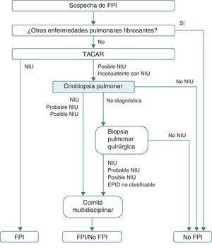 Algoritmo diagnóstico de la fibrosis pulmonar idiopática propuesto tras la incorporación de la criobiopsia de manera sistemática antes de realizar una biopsia pulmonar quirúrgica. EPID: enfermedad pulmonar intersticial difusa; FPI: fibrosis pulmonar idiopática; NIU: neumonía intersticial usual; TACAR: tomografía computarizada de alta resolución.