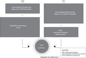 Dos posibles vías de acceso de los estímulos para la tos crónica.