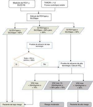 Algoritmo de decisión para la clasificación del riesgo quirúrgico. FEV1: volumen espiratorio forzado en el primer segundo&#59; DLCO: capacidad de difusión del CO&#59; Hb: hemoglobina&#59; ThRCRI: Thoracic Revised Cardiac Risk Index&#59; ppo: previsto postoperatorio&#59; VO2: consumo de oxígeno&#59; max: máximo.