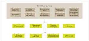 Los componentes de un programa de rehabilitación pulmonar completo e integrado tienen un efecto directo y positivo sobre el paciente, tanto a nivel físico como psicológico, favoreciendo que el paciente se vuelva más proactivo hacia su enfermedad, adquiriendo conductas de vida saludable y, por consiguiente, reduciendo el riesgo de exacerbaciones y mortalidad. Adaptada de Spruit et al22.