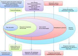 Componentes básicos de un modelo de atención integrada en la EPOC.Adaptada por C. Hernández de Spruit et al.11.
