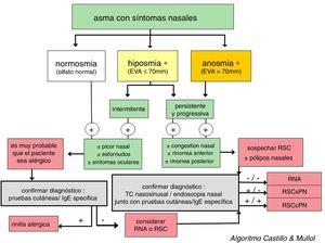 Algoritmo diagnóstico basado en la pérdida de olfato para discriminar entre rinitis y rinosinusitis crónica en pacientes asmáticos. En la figura se muestra el algoritmo diagnóstico en el paciente asmático con síntomas nasales para discriminar entre rinitis, con o sin alergia, y rinosinusitis crónica, con o sin pólipos nasales. EVA: evaluación analógica visual; RNA: rinitis no alérgica; RSCcPN: rinosinusitis con pólipos nasales; RSCsPN: rinosinusitis crónica sin pólipos nasales. * Ante una hiposmia/anosmia siempre deben descartarse primero otras causas frecuentes, tales como un traumatismo craneoencefálico (p.ej., accidente) o una virasis (p.ej., resfriado común o gripe).