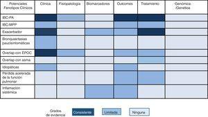 Propuesta de diferentes posibles fenotipos clínicos en bronquiectasias y su actual evidencia científica. EPOC: enfermedad pulmonar obstructiva crónica; IBC: infección bronquial crónica; MPP: microorganismos potencialmente patógenos; PA: Pseudomonas aeruginosa.