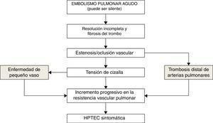 Fisiopatología de la hipertensión pulmonar tromboembólica crónica.