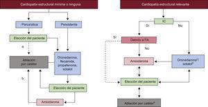 Farmacos antiarritmicos y ablacion auricular izquierda para el control del ritmo cardiaco en la fibrilacion auricular. FA: fibrilacion auricular; IC: insuficiencia cardiaca. a Suele ser adecuado el aislamiento venoso pulmonar. b Podria ser necesaria una ablacion auricular izquierda mas extensa. c Precaucion en cardiopatia coronaria. d No recomendada en hipertrofia ventricular izquierda. Insuficiencia cardiaca por FA: taquicardiomiopatia.