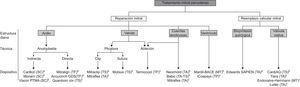 Clasificación de las terapias percutáneas para el tratamiento de la insuficiencia mitral. MT: minitoracotomía; SC: seno coronario; TA: transapical; TF: transfermoral; TP: transpericárdico; TS: transeptal. aDispositivos con aprobación de la Unión Europea para uso clínico. bDispositivos con primeras experiencias en humanos. cDispositivos en fase preclínica.